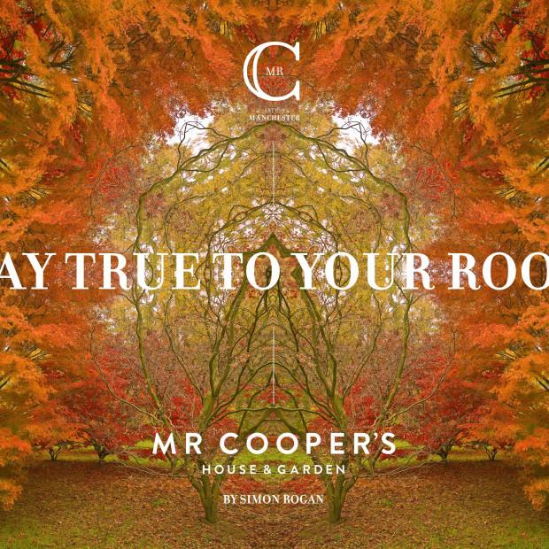 Mr Coopers Branding